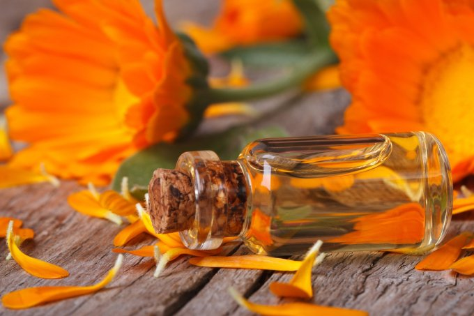 bigstock-Calendula-Tincture-And-Flowers-69335800
