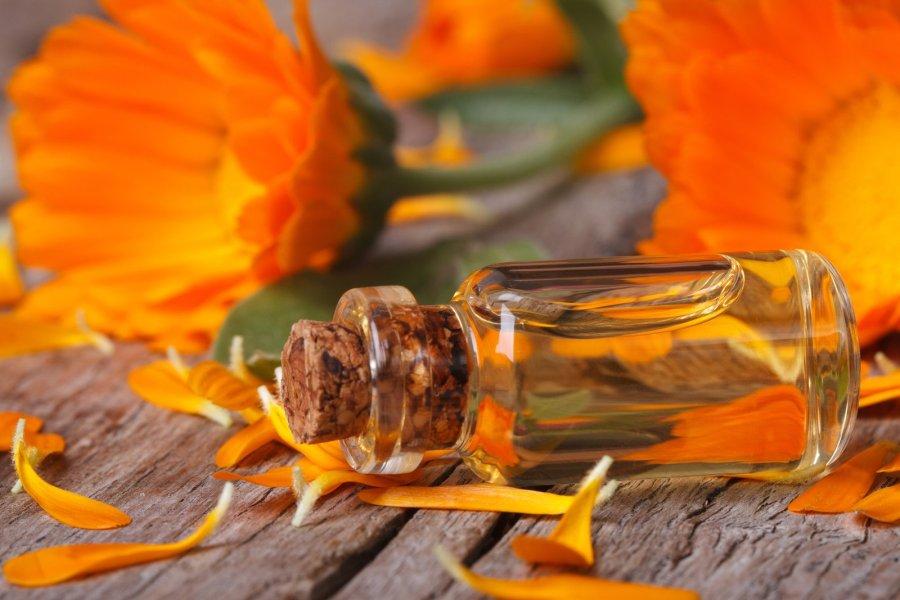bigstock-Calendula-Tincture-And-Flowers-69335800
